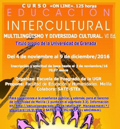 """Curso on line """"EDUCACIÓN INTERCULTURAL. MULTILINGÜISMO Y DIVERSIDAD CULTURAL. VI Ed."""""""